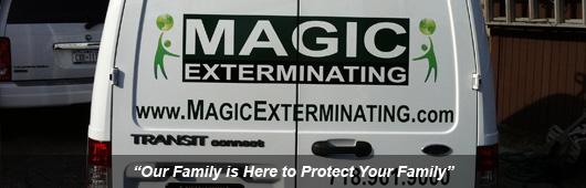 Commercial exterminating services